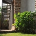 woodstone_uganda24
