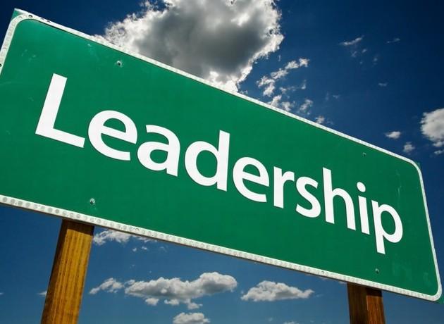 mini-leadership
