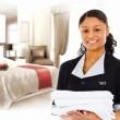 mini-housekeepers