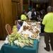 mini-2012-diaspora-dinner_13