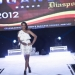 mini-2012-diaspora-dinner_61